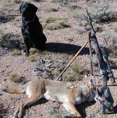 Varmint Al's Hunting Page